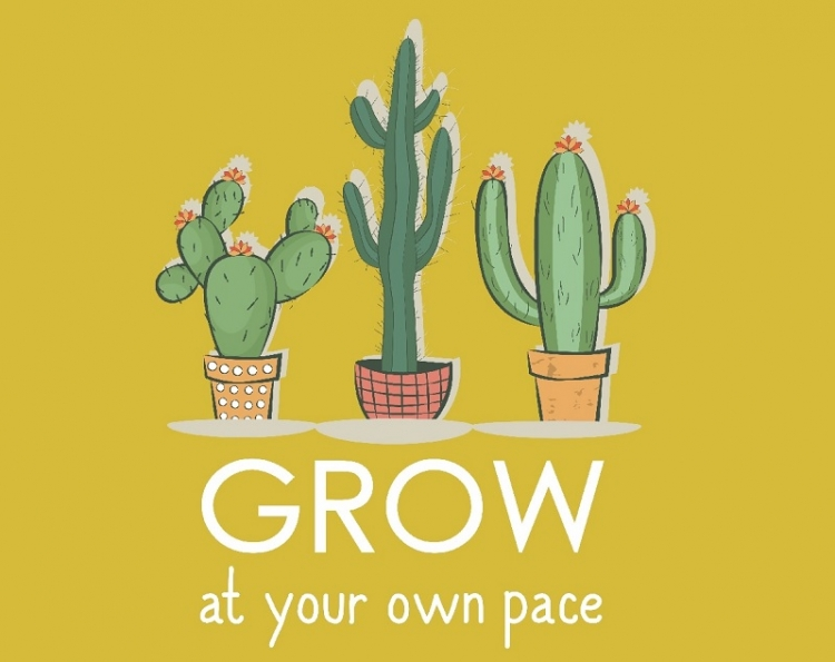 Drie cactussen met daaronder de spreuk 'Grow at your own pace'.